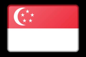 Encrypt Phone Number Singapore